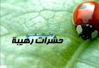 حشرات رهيبة