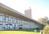 بحث في جامعة حيفا حول الجدوى من  طوربينات الرياح