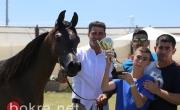 كفرقرع تحتضن مهرجان الربيع لجمال الخيول العربية ال٢١