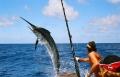 وثائقي - ملك الصيادين بجودة عالية