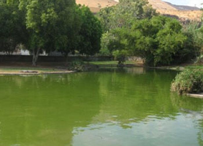 السياحة فى حماة