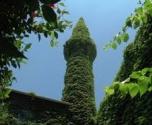 الجامع الأخضر.. مسجد تغطيه النباتات في أضنة التركية