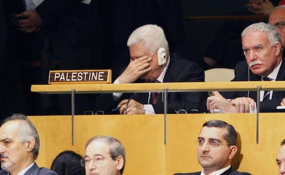 انقسام مجلس الأمن بشأن عضوية