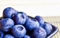 التوت الأزرق يخفض ضغط دم النساء
