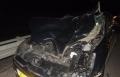مجد الكروم: اصابة شخصين ونفوق حصان بحادث دهس