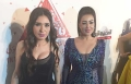فستان دينا الاكثر استفزازاً في مهرجان القاهرة السينمائي