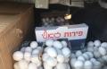 كفر مندا: الشرطة تضبط كمية من البيض غير الصالحة للاستهلاك الادمي