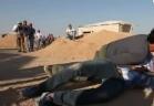 رامز ثعلب الصحراء - دياب
