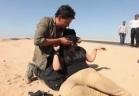 رامز ثعلب الصحراء - مروة