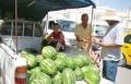 7500 محاول تهريب لخضراوات وحيوانات عام 2012
