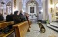 """الكلب """"توم"""" يواظب على القداس بالكنيسة"""