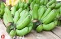 الموز الأخضر الفاكهة الأفضل لإنقاص الوزن