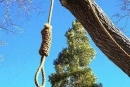 اسرائيل 2014: شبهات...يقتل زوجته طعناً وينتحر شنقاً
