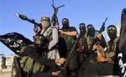 الغارديان: طبيب شاب انضم لداعش يقتل الارانب ويقرأ لالبير كامو