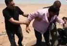 رامز ثعلب الصحراء - محمد فؤاد