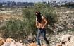 إصابة فتى بجروح والعشرات بالاختناق في مسيرة بلعين