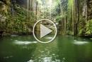 سحر الطبيعة والجمال في شبه جزيرة يوكاتان
