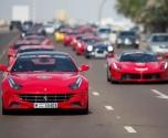 140 سيارة فيراري تشكل موكباً من دبي إلى أبوظبي