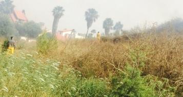عكا:حريق في تل نابليون