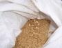 مصر تشتري 240 ألف طن من القمح الروسي والروماني