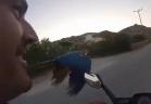 بالفيديو...سباق غريب من نوعه بين دراجة نارية و