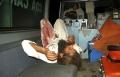 الباكستان: مقتل 33 شخصا بانفجار في مسجد