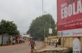 العلماء يكتشفون مصدر فيروس ايبولا