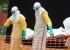 منظمة الصحة: حصيلة إيبولا تتجاوز الـ10 آلاف إصابة