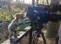 أنثى دب كوالا تساعد طاقم تصوير تلفزيوني