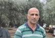 المزارع ملحم: امطار اليوم نعمة لأشجار الزيتون