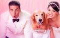 حصريا ً: الفيلم الهندي الكوميدي Entertainment
