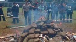 حي في أندونيسيا بأكمله ينتشي بعد حرق ماريجوانا