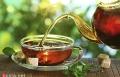 الشاي فوائد كثيرة وأفضل أنواعه الأخضر