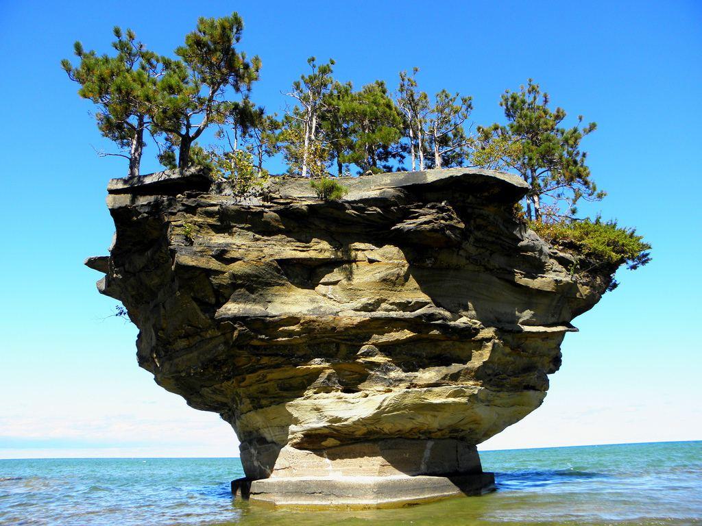 جزيرة اللفت اغرب الجزر العالم