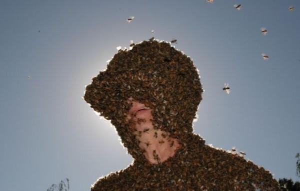 صدق او لا تصدق  رجل يحبه النحل: