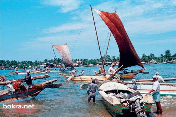 ♫ سريلانكا أو البلاد العائمة ♫ getImageCA0A41VN.jpg