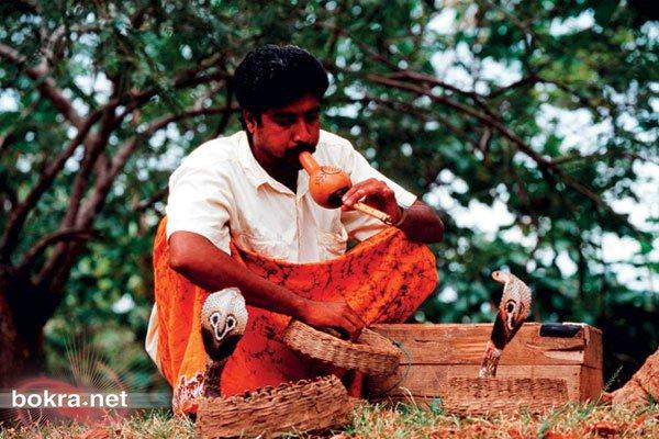 ♫ سريلانكا أو البلاد العائمة ♫ getImageCAAZYHTK.jpg