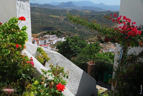 القرية البيضآء أولفيرا Olvera 868686.jpg