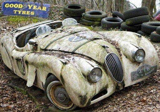شاهد مقبرة للسيارات الكلاسيكية النادرة في ألمانيا 196847159