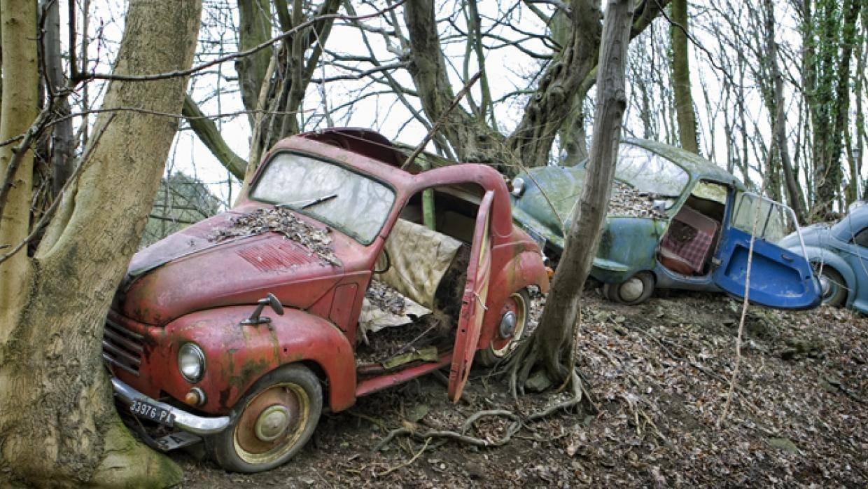 شاهد مقبرة للسيارات الكلاسيكية النادرة في ألمانيا 749874112