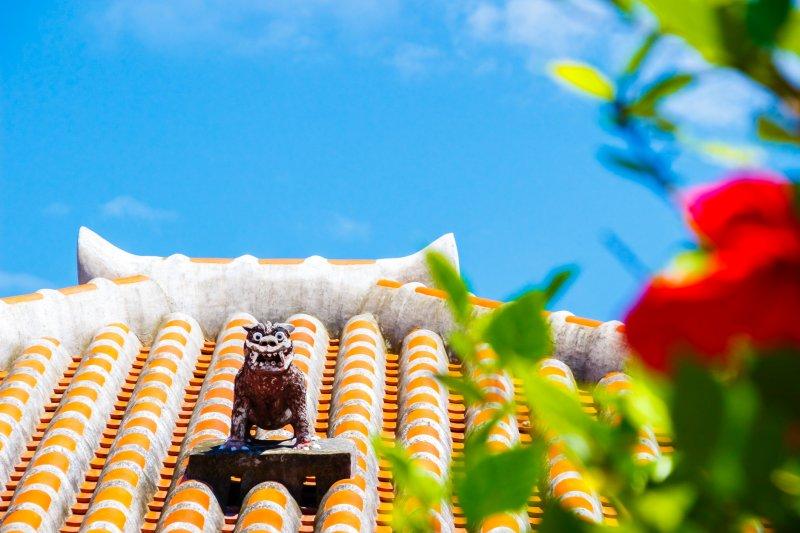 ماذا تعرفون عن جمال اليابان؟ هل سمعتم عن جزيرة أوكيناوا؟ 1075548787