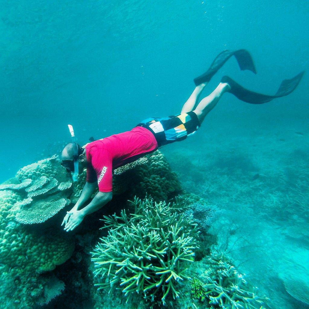 زيارة الى جزيرة تيومان في ماليزيا 1311829782
