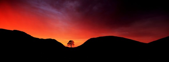 صور رائعة من المسابقة البريطانية للمناظر الطبيعية 1310112712