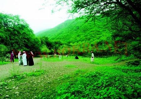 مدينة صلالة الطبيعة الخلابة فى عمان